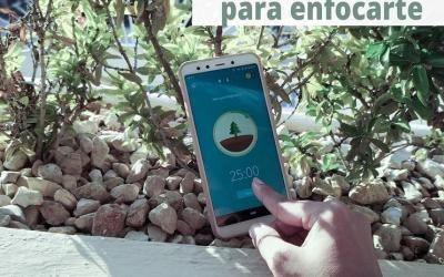 Forest, una app para enfocarte